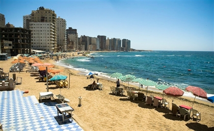 Alexandria Aims for World Record with Biggest Beach Cleanup Ever